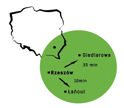 szkółka dąbek rośliny Leżajsk