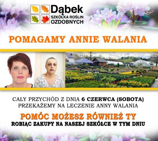 ANNA_WALANIA